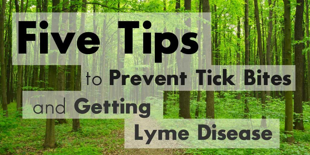 Five Tips to Prevent Tick Bites and Getting Lyme Disease