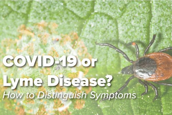 COVID-19 or Lyme Disease Featured
