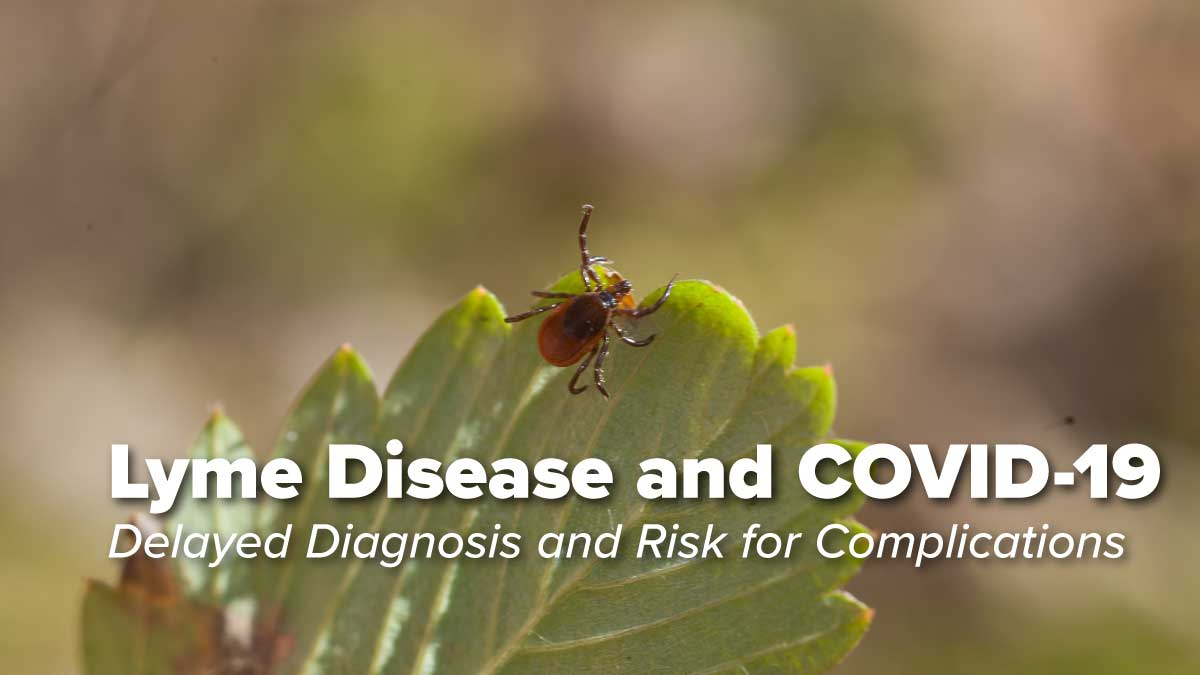 Lyme Disease in the Era of COVID-19: A Delayed Diagnosis and Risk for Complications